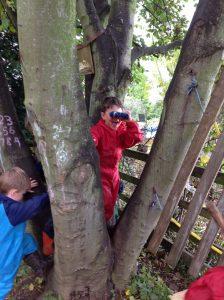 Applegarth Primary School Blog | We Love Autumn October 2017